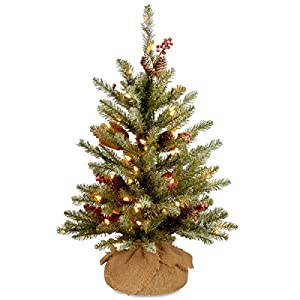 National Tree Dunhill Fir Tree with Battery Operated Warm White LED Lights 38