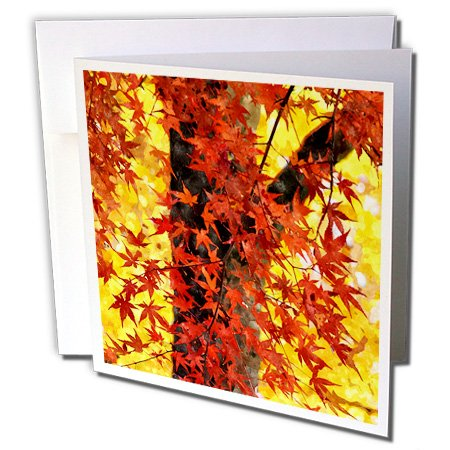 Doreen Erhardt Autumn Collection - Lovely Maple Tree with Autumn Red Leaves and Golden Sunlight Painting - 6 Greeting Cards with envelopes (gc_251769_1) (Outdoor Seasonal Painting Collection)