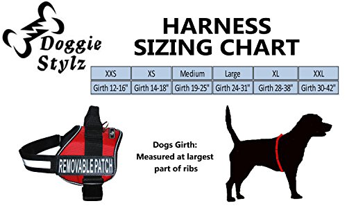 Pictures of Therapy Dog Harness Service Working Vest Jacket 3