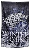 "Game of Thrones House Sigil Tournament Banner GOT Flag Poster Wall Decals Party Decoration(30"" x 50"") (House Stark)"