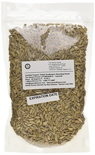 hulled sunflower sprouting seeds - 4