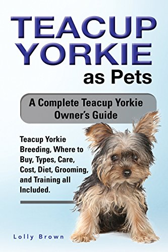 Teacup Yorkie As Pets Teacup Yorkie Breeding Where To Buy Types Care Cost Diet Grooming And Training All Included A Complete Teacup Yorkie