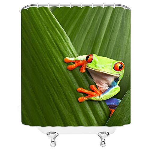 Rainforest Animal Pictures - Xnichohe Animal Decor Collection, Red Eyed Tree Frog Hiding in Exotic Macro Leaf in Costa Rica Rainforest Tropical Nature Photo, Polyester Fabric Bathroom Shower Curtain, 84 Inches Extra Long, Green