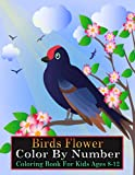Birds Flower Color By Number Coloring Book for Kids