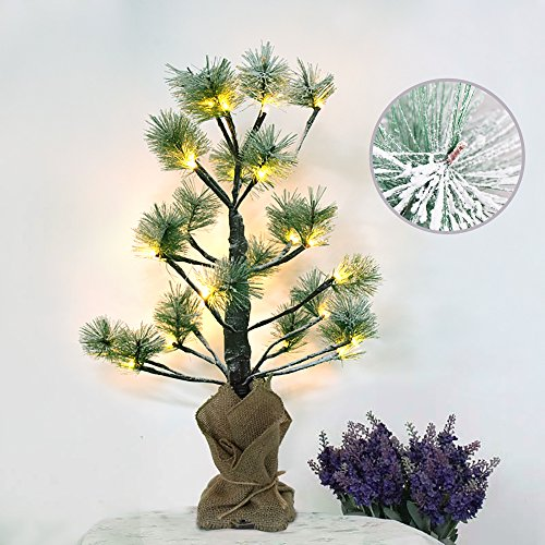 Outdoor Lighted Pine Trees - 3