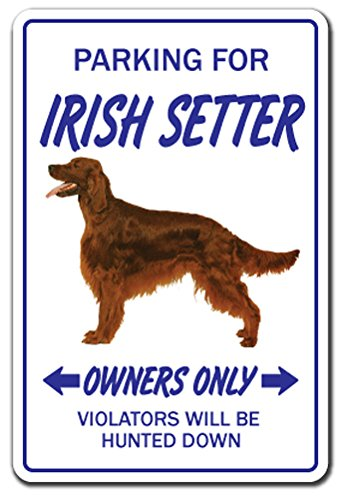 [SignJoker] IRISH ~Novelty Sign~ parking ireland flag beer gift Wall Plaque Decoration