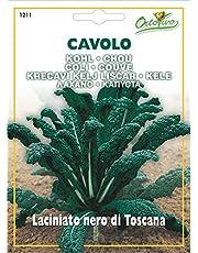 Hortus 24CVL1211 Maxi Busta Ortovivo Cavolo Laciniato Nero di Toscana, 12x0.2x16.5 cm