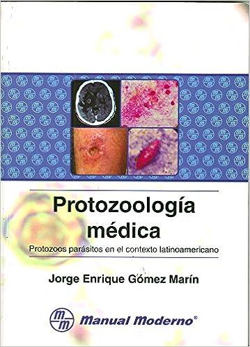 que protozoos producen enfermedades