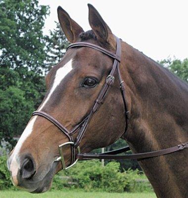 Collegiate Square Raised Bridle Pony ()