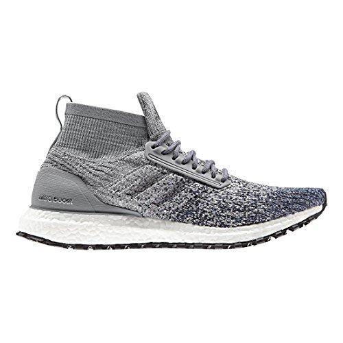 adidas Performance Men's Ultraboost All Terrain, Grey Heather/Grey/Noble Indigo, 9.5 M US