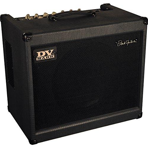 - DV Mark Frank Gambale Signature 150W 1x12 Guitar Combo Amp Level 1