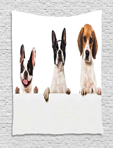estry, Three Friendly Breed Dogs Pug Surprised Smiling Puppy Photo, Wall Hanging for Bedroom Living Room Dorm, 40 W X 60 L Inches, Coconut Dark Peach and Pale Rust ()