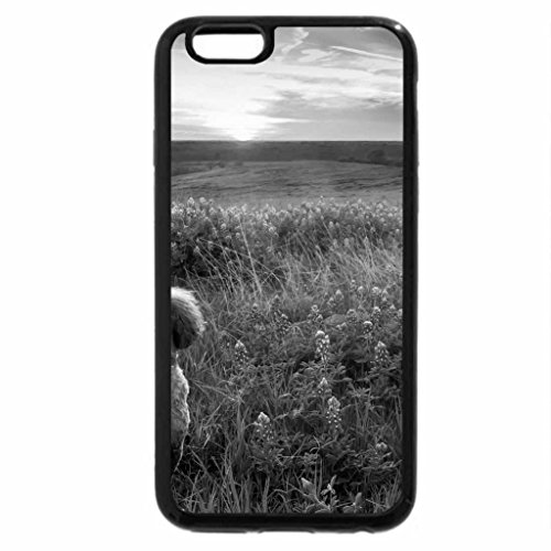 iPhone 6S Case, iPhone 6 Case (Black & White) - Dog on blue meadow