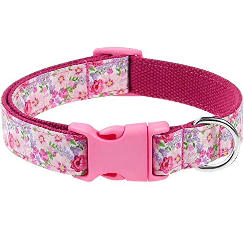 Taglory Western Dog Collar, Pink Flower Pattern for Girl Dogs, Fit Medium & Young Large Dogs
