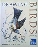 Drawing Birds: An R.S.P.B.Guide (Draw Books)