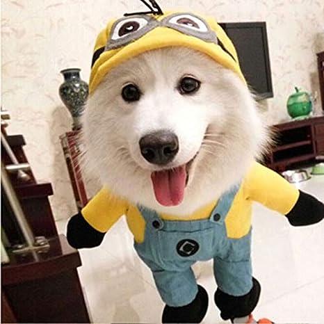 FidgetGear Disfraz de Perro Divertido Minion Ropa Amarillo ...