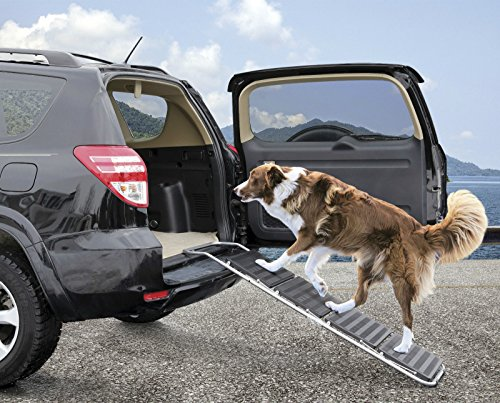 Guardian Gear Portable 4-Step Pet Ramp Ramp Supports Pets Up To 150 Pounds and Folds Down for Transporting