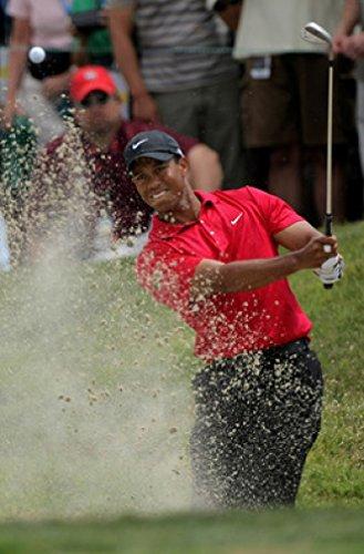 (Tiger Woods 18X24 Poster New! Rare! #BHG316664 )