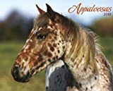 Appaloosa 2010 Calendar