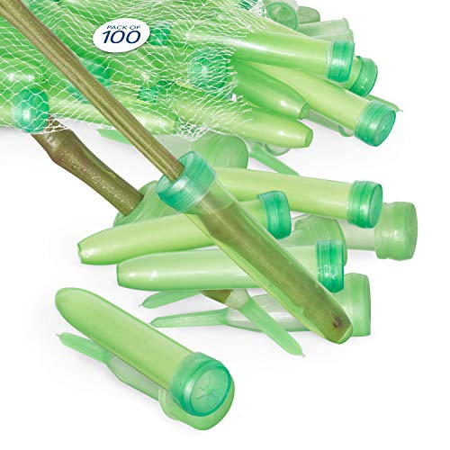 (Floral Water Tubes/Vials For Flower Arrangements by Royal Imports, Green - 3