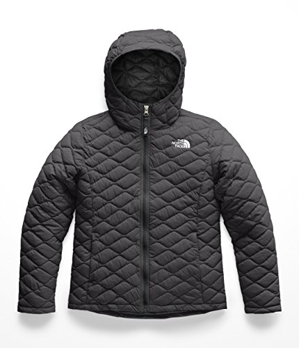 The North Face Kids Girl's Thermoball Hoodie (Little Kids/Big Kids) TNF Black 2 X-Small ()