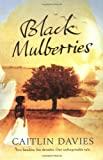Front cover for the book Black Mulberries by Caitlin Davies