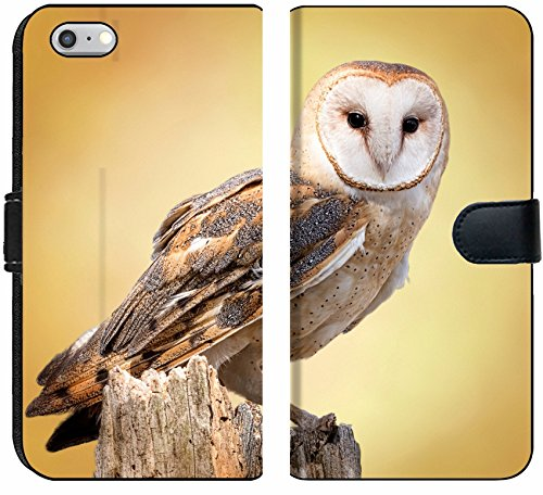 Apple iPhone 6 and iPhone 6s Flip Fabric Wallet Case Image ID 27944160 A barn owl Perched on a Dead Tree Stump Barn Owls are Silent Predator