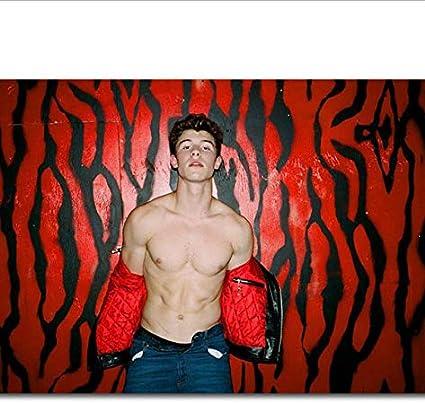 yhnjikl Shawn Mendes In My Blood Music New Pop Music Singer ...