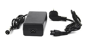Batería Li-Ion-cargador DC29, 4V - 1,4 A: Amazon.es ...