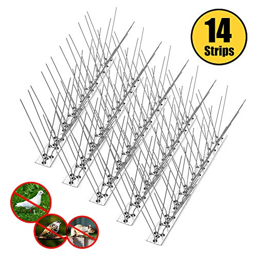 Top bird spikes for lights