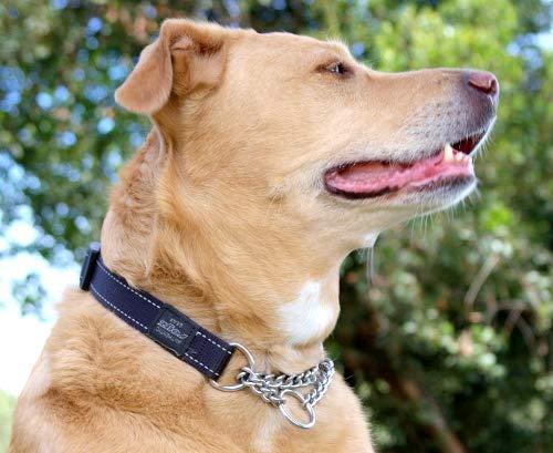ROGZ Reflective Nylon Choke Collar; Slip Show Obedience Training Gentle Choker for Extra Large Dogs, Black