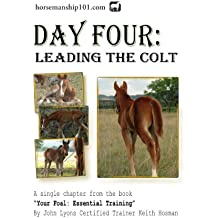 Day Four: Leading the Colt (Your Foal: Essential Training Book 4)