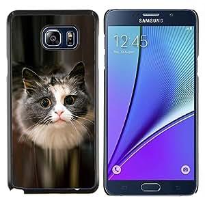 EJOOY---Cubierta de la caja de protección para la piel dura ** Samsung Galaxy Note 5 5th N9200 ** --Lindo gato felino mascota peluda gris de pelo largo