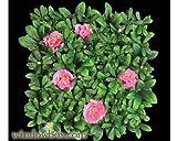 Artificial Azalea Mat 12 Inch Square- Pink Flowers