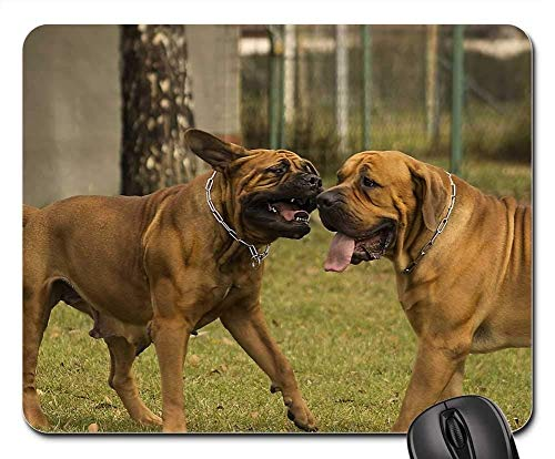 Gaming Mouse Pads,Mouse mat,Playing Dog Dogs Pet Wild Game Meat Play Cute ()