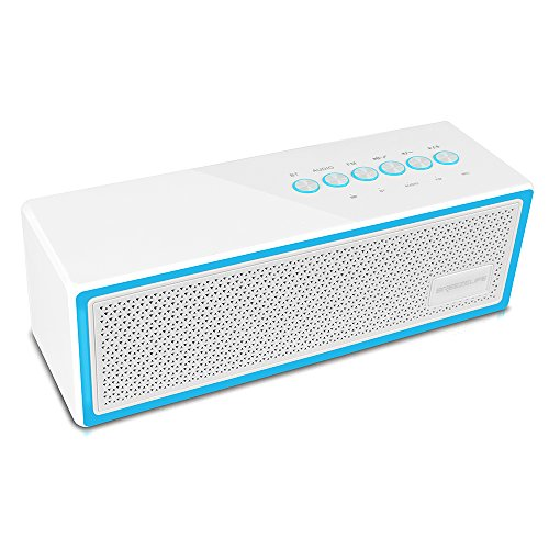BREEZELIFE Bluetooth Speaker FM Radio Player Stereo Portable Wireless Speaker 10W Drivers with HD Sound, Built-in Microphone, High Definition Audio and Enhanced Bass