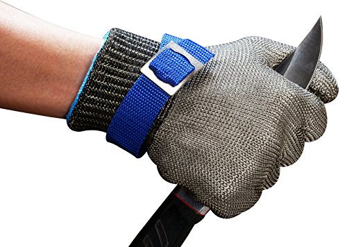 Metal Mesh Glove (Schwer Cut Resistant Gloves-Stainless Steel Wire Metal Mesh Butcher Safety Work Gloves for Meat Cutting, fishing (Large))
