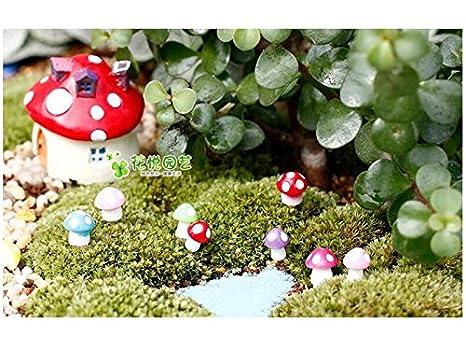 Flowerrs Jardín de Hadas Ornamentos en Miniatura Pequeño Champiñón para DIY Micro Landscape Decoration (Verde) Decorativo: Amazon.es: Hogar
