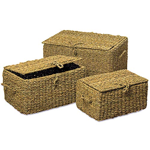 WHW Whole House Worlds Made by Nature Rattan Trunks, Set of 3, Storage Blanket Chests, Curated Seagrass, Handcrafted, 3 Sizes, 23 1/2, 19 3/4, and 16 1/2 Inches