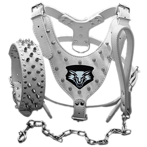 Amazon Com Haoyueer Medium Large Breed Leather Spiked Studded