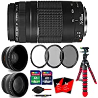Canon EF 75-300mm f/4-5.6 III USM + 24GB Accessory Kit for Canon SL1 20D 60D and All Canon SLRs 6473A003
