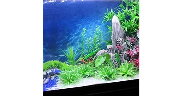 Largura 15m wallpaper océano acuario pintura fondo pecera imagen de fondo: Amazon.es: Hogar