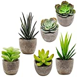 This assortment of artificial cactus is great for many rooms and fits perfectly in that small space to bring color and life.