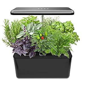 Indoor Gardening Kit Hydroponics Growing System Kit w/LED Plant Grow Light for 7 Plants,Hydroponics Indoor Home Gardening Kit Herb Seed Pod Kit w/Nutrients,Seeds Not Included.IDEER LIFE. (Black18804)