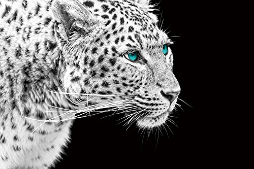 The Pursuit  Glass Wall Art - Big cat wall art - modern wall art