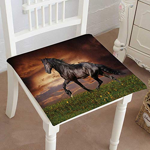 """Mikihome Chair Seat Pads Cushions Black Friesian Horse trot Square Car and Chair Cushion/Pad with Ties, Soft, for Indoors Or Outdoor 18""""x18""""x2pcs"""