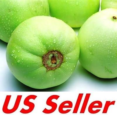 20 Seeds of HEIRLOOM JAPANESE SWEET MELON E64, MUSKMELON Green Cantaloupe