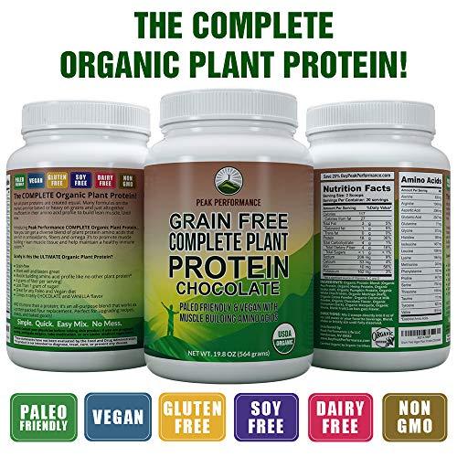 Buy organic vegetarian protein powder