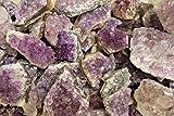 Bulk Lot 1 Kilo (2.2 lb) Amethyst Crystal Cluster Small Specimens 35-45 Pieces