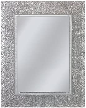 Style Selections Etched Engraved Polished Frameless Wall Mirror